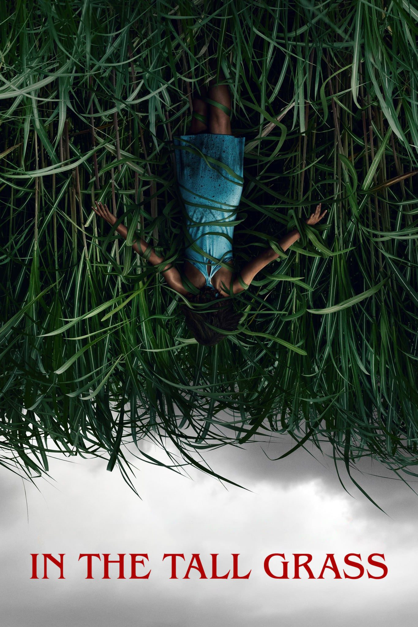 """Poster for the movie """"In the Tall Grass"""""""