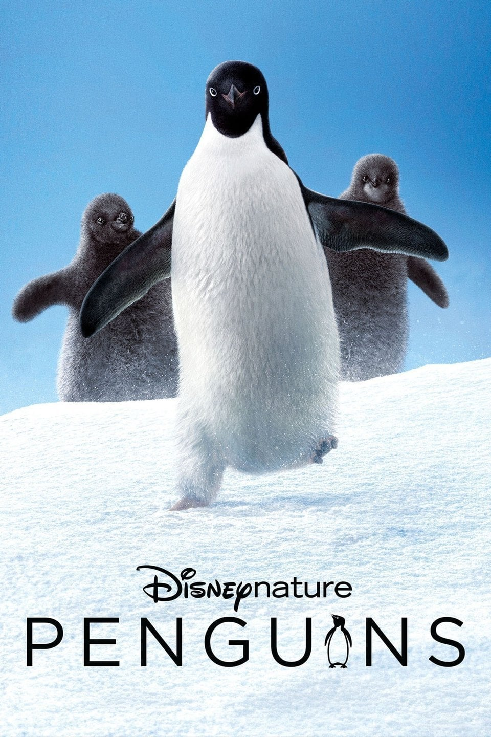 "Poster for the movie ""Penguins"""
