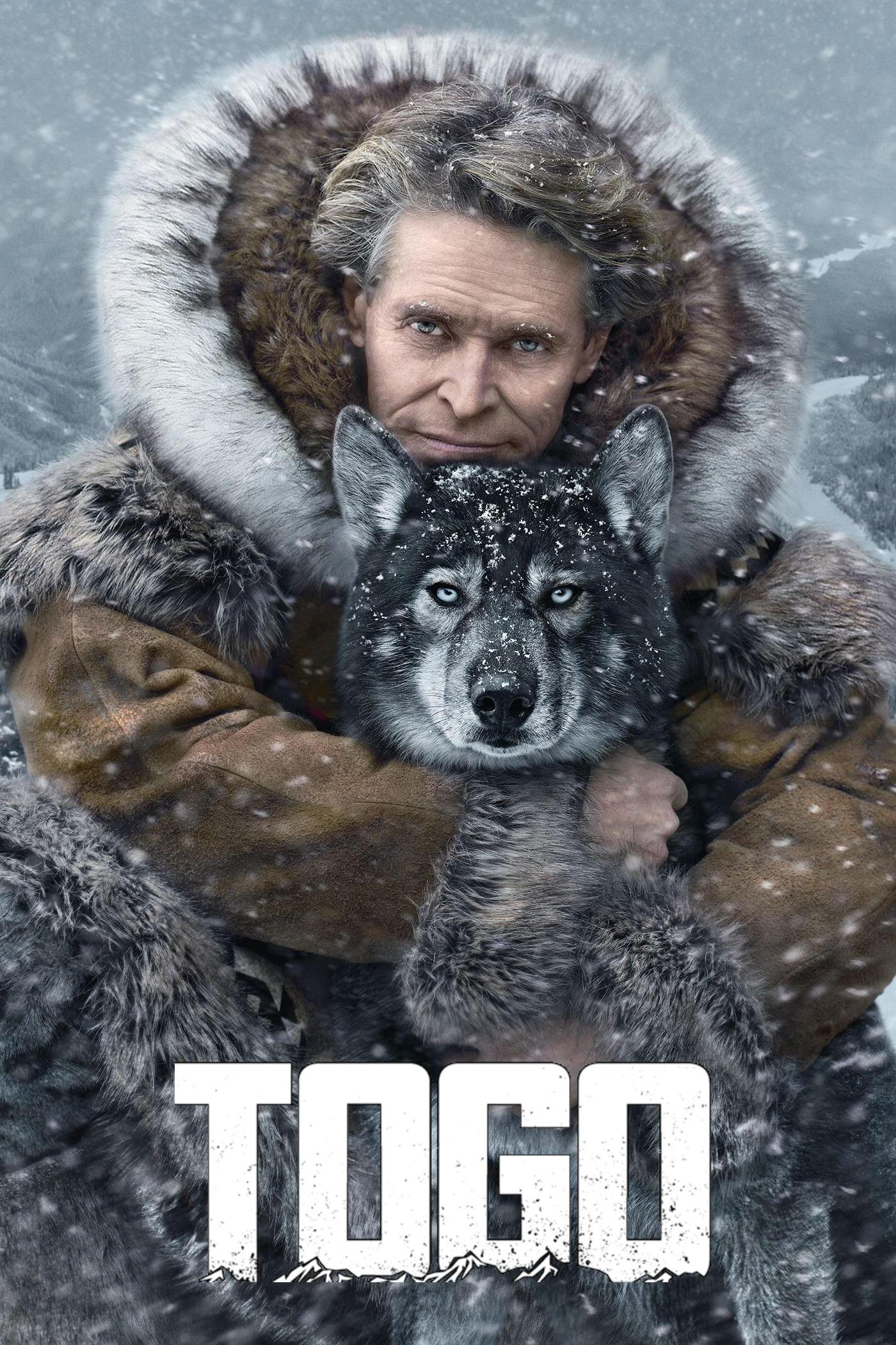 "Poster for the movie ""Togo"""